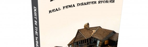 Real FEMA Disaster Stories, ebook