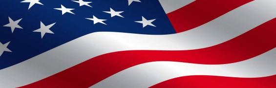veteran's day special, ebook